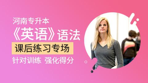 河南专升本英语语法试题练习专场
