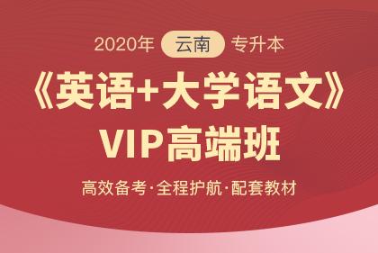 2020年云南专升本VIP高端班·英语+大学语文
