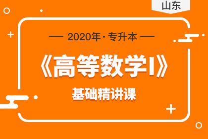 2020年山东专升本《高等数学Ⅰ》基础精讲课