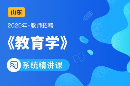 2020年山东教师招聘教育学系统精讲课