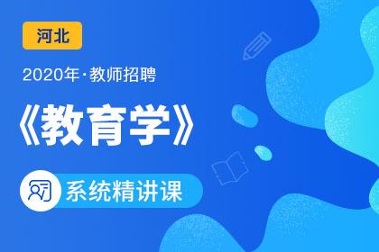 2020年河北教师招聘教育学系统精讲课