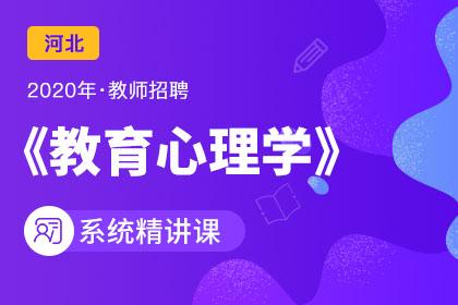 2020年河北教师招聘教育心理学系统精讲课