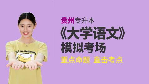 贵州省普通高校专升本《大学语文》考试考前冲刺模拟试卷考场