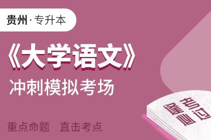 贵州专升本大学语文考前冲刺模拟考场