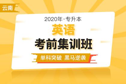 2020年云南專升本學前教育專業招生計劃數