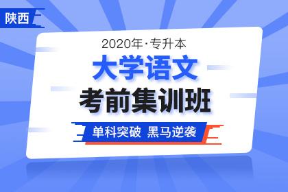 陕西省统招专升本考试招生计划是多少