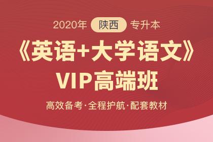 2019年陕西省普通高等教育专升本招生专业课考试科目