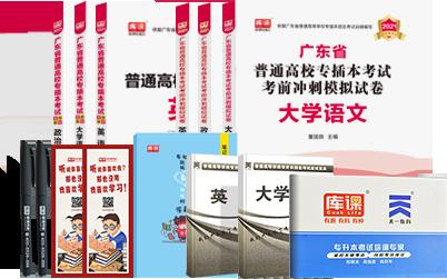 2021年广东专插本考试英语+政治理论+大学语文 (教材+模拟卷)