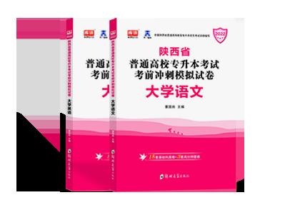 2022年陕西专升本考试英语+大学语文 (模拟卷)