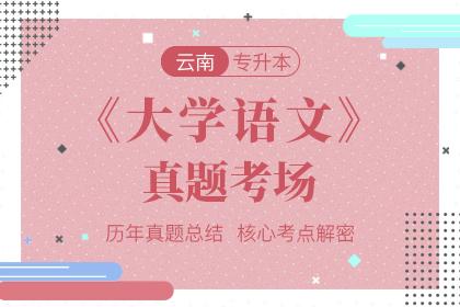 云南专升本大学语文真题考场
