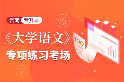 云南专升本大学语文专项练习考场