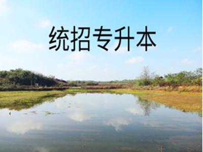 2020云南艺术学院专升本录取分数线