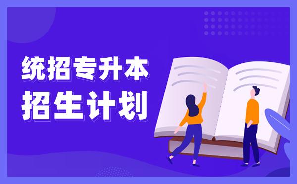 2021年北京专升本招生计划