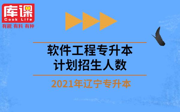 2021年辽宁软件工程专升本计划招生人数