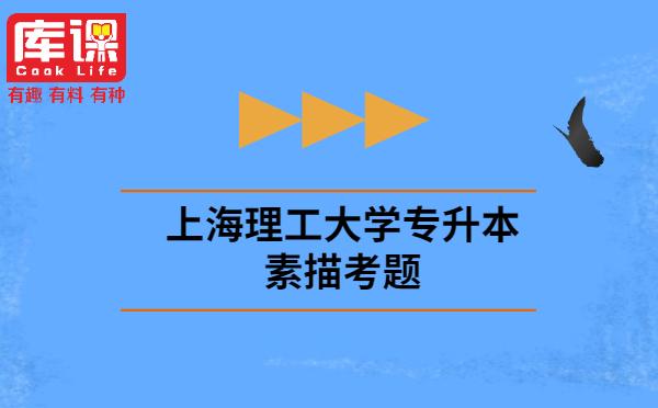 上海理工大学专升本素描考题