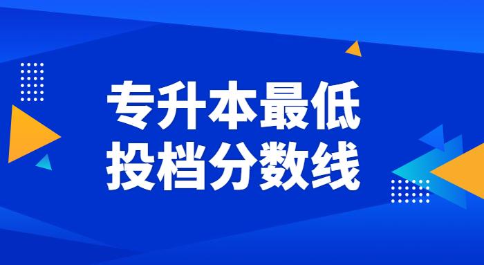 2021聊城大学东昌学院专升本投档分数线