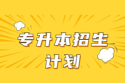 黑龙江东方学院2021年专升本招生计划