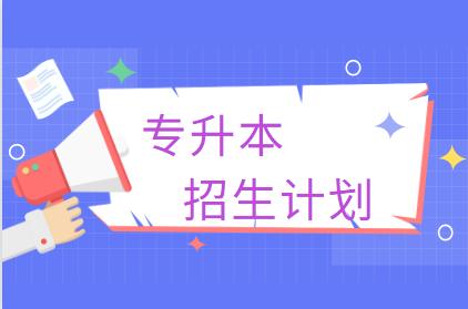 广东专升本招生计划最多的7个专业