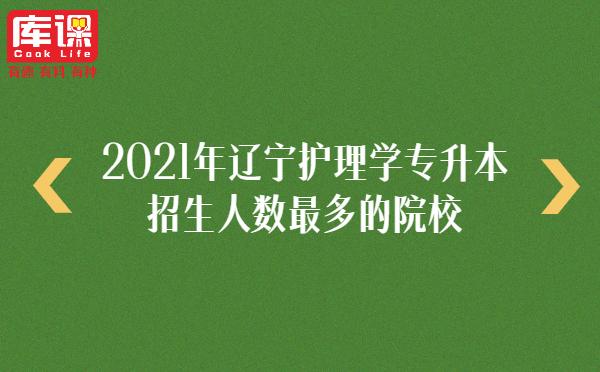 2021年辽宁护理学专升本招生人数最多的院校