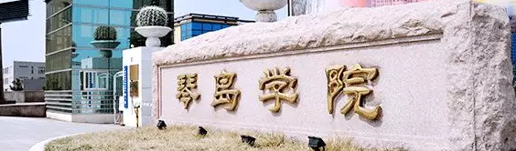 2019年山东青岛理工大学琴岛学院专升本工程管理专业分数线