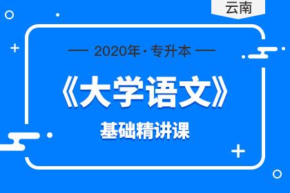 贵州专升本大学语文试题及答案(2020年)
