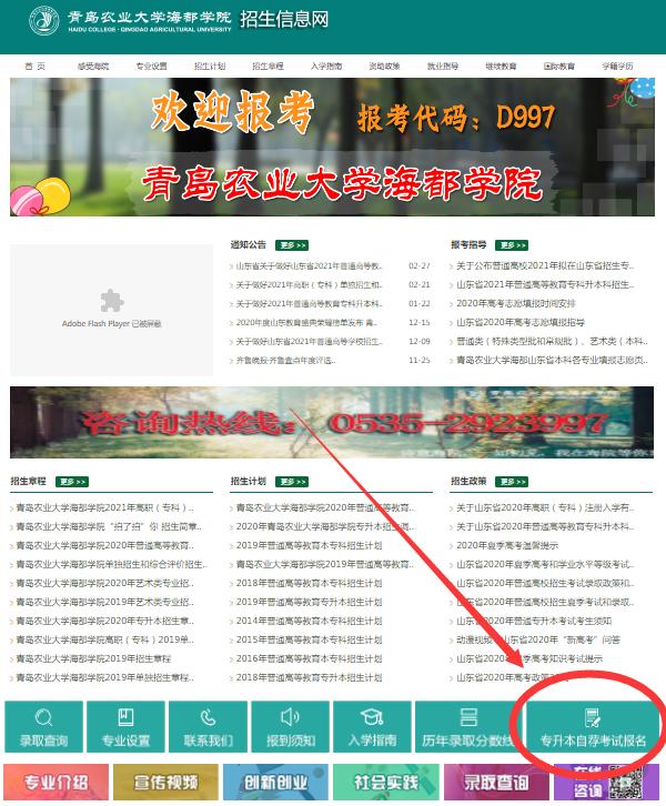 青岛农业大学海都学院专升本自荐报名入口网址2021